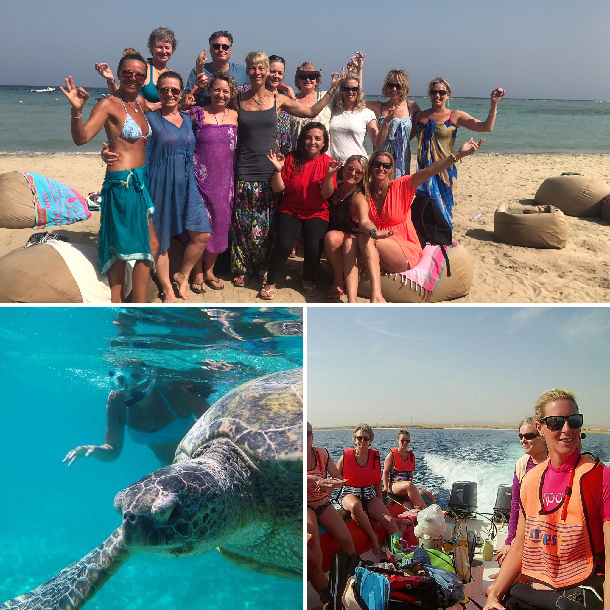 Marsa Shagra Beach Yoga Holiday March 2018